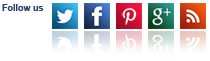 Follows on Facebook, Twitter, Pinterest, Google + and Our Blog
